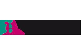 logo_braunheizsan