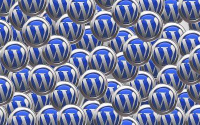 Warum verwenden wir ausschließlich WordPress?